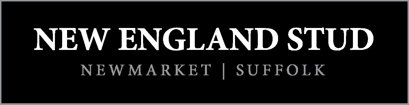 New England Stud Logo